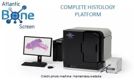nanozoomer for preclinical histology