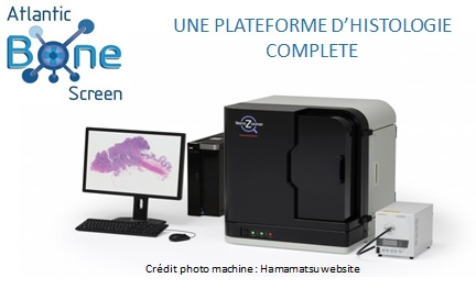 scanner de lames histologie préclinique